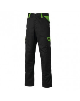 Pantalon Everyday Noir/Vert - Dickies