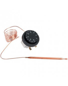 Thermostat - Cotherm